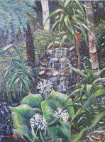 Cardwell Lillies, native flora, North Queensland Flora, Wet Tropics Rainforest