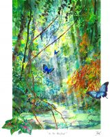 Kuranda-Rainforest-Print-on-25-x-20cm-paper